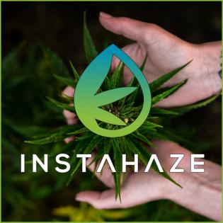 CBD, Cannabis und Hanf  Der InstaHaze CBD Podcast Deutschland