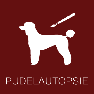Pudelautopsie