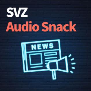 SVZ Audio Snack