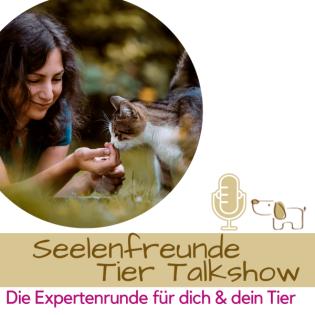 Seelenfreunde Tier Talkshow - Die Expertenrunde für dich & dein Tier