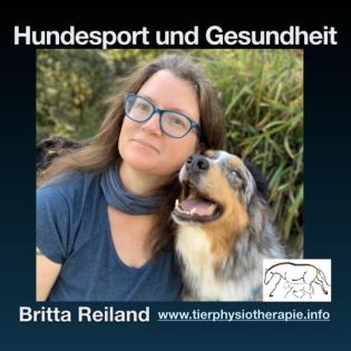 Hundesport und Gesundheit