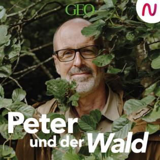 Peter und der Wald – ein GEO-Podcast