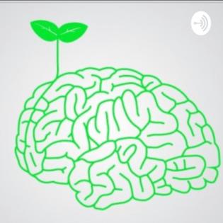Intulligenz - intelligent und intuitiv handeln