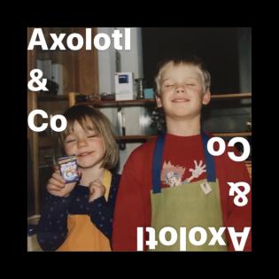 Axolotl & Co