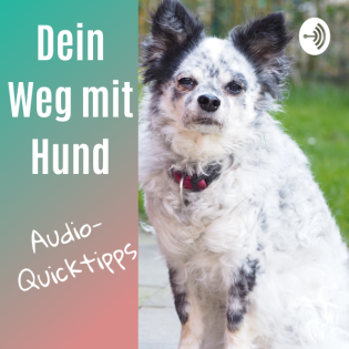 Dein Weg mit Hund - Audio-Quicktipps