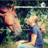 Folge 41 Ein Stück Pferd bitte - was ist eigentlich eine Reitbeteiligung?