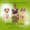 Bettina Bumb Coach für Menschen mit Beagles & Jagd(familien)hunden (Trailer)