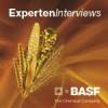Fungizidbehandlungen in Zuckerrüben