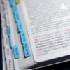 117 1. Chronik (1Chr 22-24)