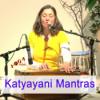 Mahamantra mit Sundaram and Freunden