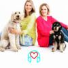 #19 Jule Gölsdorf | VIP-Podcast mit Haustieren