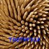 Folge 7 - Toothpick Goes Pro