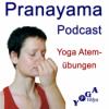 Wechselatmung Yoga Atemübung – Anfänger-Variation