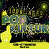 1000 Jahre Popkultur - Episode 30 - One Hit Wonder - Teil 2