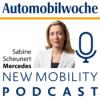 Wie tickt der Daimler-Kunde, Frau Scheunert?