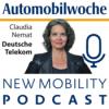 Kann Deutschland künstliche Intelligenz, Frau Nemat?
