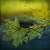 #48 - momo erzählt - Gnom, Wasser und Stein Teil 1