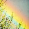 #33 - momo erzählt - Mawu und die Regenbogenschlange