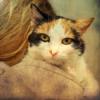 #24 - momo erzählt - wisst ihr, wie die Katze ins Haus kam?