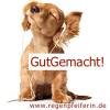GutGemacht! Von verhätschelten und über alles geliebten Hunden... Download
