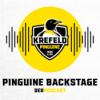 Folge 8 - Nachwuchsarbeit bei den Pinguinen