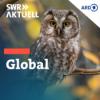 Überleben: Was hält unseren Planeten stabil?