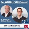 #006 WEITBLICKER im Dialog - IHK und New Work?