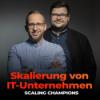 #70 So funktioniert die Engpassanalyse – mit Nikolas Schlömann (Scaling Champions)