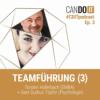 CanDoIT Podcast: Teamführung III