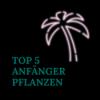 Die Top 5 Anfänger Pflanzen