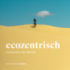EU: Null-Schadstoffziel - 12 neue Solarparks in der Eifel  - Klimakiller Methan