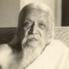 """005 Sri Aurobindo: """"Das Göttliche Leben"""" - Einführung in Buch I, Kap. 2"""