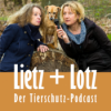 Second Home for lonely Pets - Hilfe für Tiere in der Flutkatastrophe