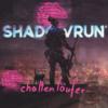 Kampagnenkonzepte in Shadowrun