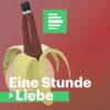 Liebeslust - Wie Sex in langen Beziehungen aufregend beleibt Download