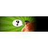 KP48: Wer nicht fragt bleibt dumm Download