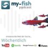 295: Die Aquarienlaufbahn - Ein Aquarianer aus Leipzig erzählt (Conrad Neubert)