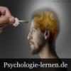 Psychologie der unbewussten Beeinflussung - Das manipulierte Gehirn