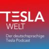 Tesla Welt - 186 - Tesla AI Day, Expertengespräch mit Alex Voigt über Neuronale Netze, den Dojo Supercomputer und den Tesla Bot und mehr