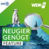 Pilze sammeln in NRW – Genuss ohne Reue Download