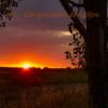067 - Ein Geschenk der Elfen Download