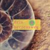 #15 Wie dich die Natur in Zuversicht lehrt. Download
