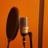 Das ABC des Präsentierens - G wie Gesunderhaltung der Stimme Download