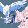 weihnachtliche träume, äh… tauben mit andré - BBT 8