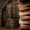 Vom Tonholz für den Geigenbau