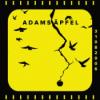 #45 - Adams Äpfel