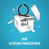 UA006 - Die Scrum Prinzipien