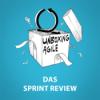 UA029 - Das Sprint Review