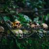 Dark Tourism - Reisen an Orte mit dunkler Geschichte