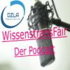 WissenstransFair (Eps.006): Ein Demenzboard für die Gerontopsychiatrie - DZLA eröffnet DialogAkademie - Massage bei Demenz - Neues aus dem DZLA